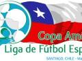 Logo Copa America de la Liga de Fútbol Especial 2013