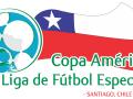 Logo Copa America Liga de Futbol Especial 2013